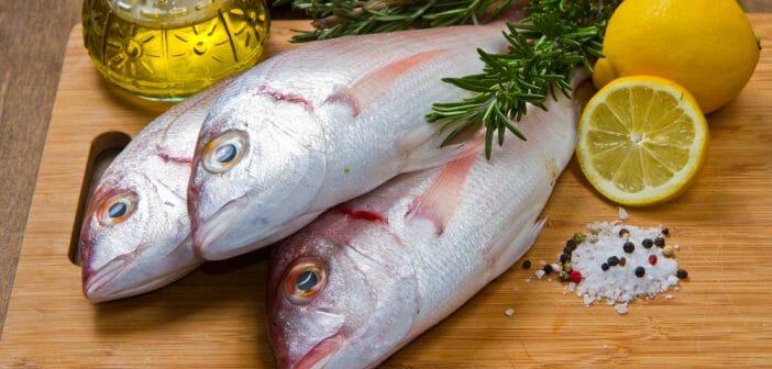 les vertus du poisson